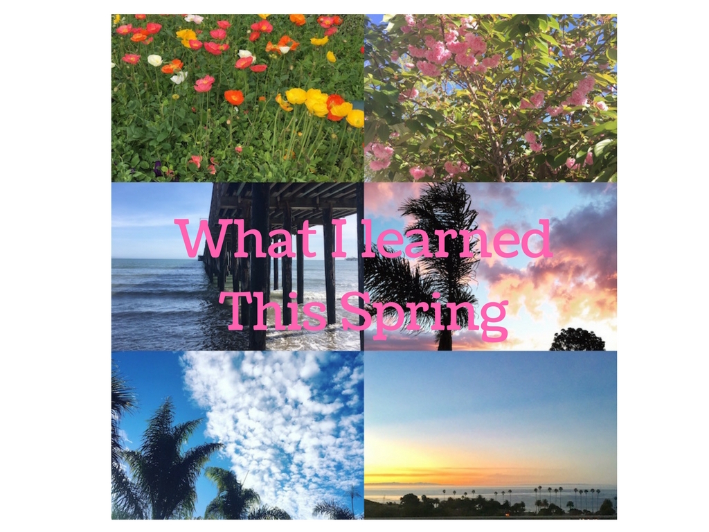 what I learned this spring www.everydaynatalie.com